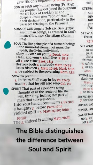The Bible distinguishes the difference between Soul and Spirit